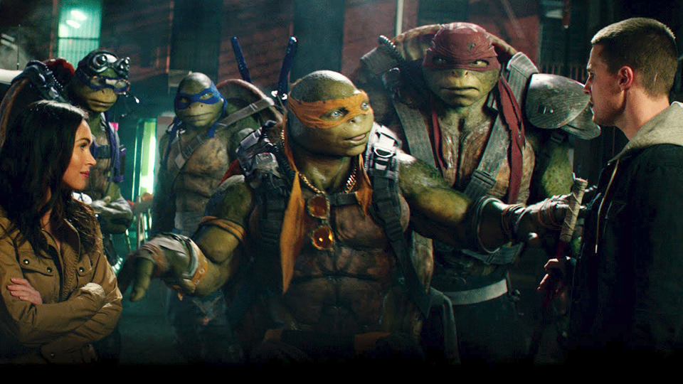 turtles_stor